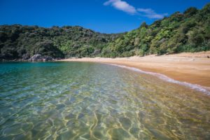 25 photos that will inspire you to visit the Nelson Tasman
